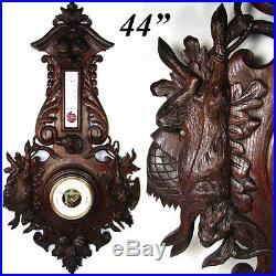 HUGE 44 Antique Black Forest Carved Oak Wall Barometer, HUNT Dog, Hare & Bird
